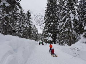A group of people pulling sleds on a path