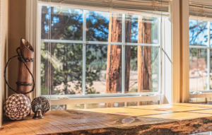 A window looking out into the forest from a tiny home, a unique place to stay in Colorado